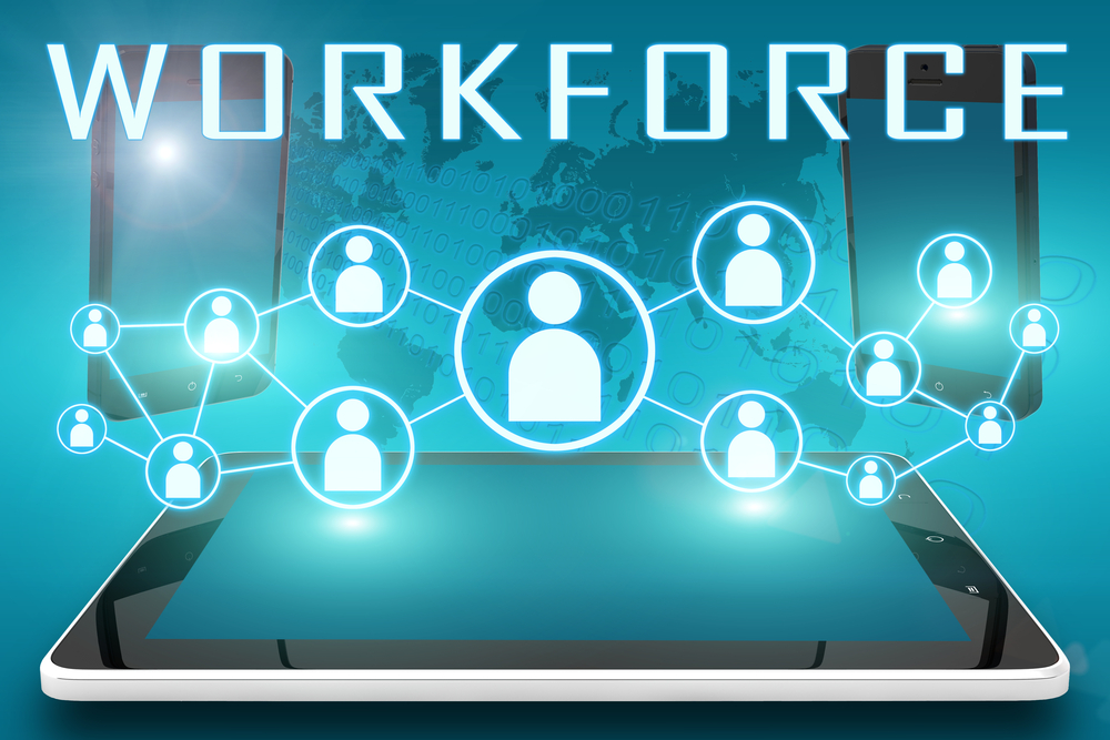 Workforce management software helps improve the business productivity